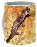 Juvenile Slimy Salamander Coffee Mug