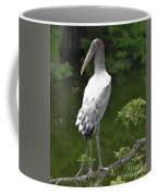 Juvenile Wood Stork Coffee Mug
