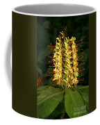 Kahili Ginger Coffee Mug