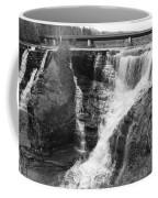 Kakabeka Falls Two Coffee Mug