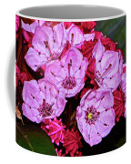 Kalmia Latifolia - Firecracker Mountain Laurel 001 Coffee Mug