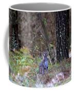 Kangaroo In The Forest Coffee Mug