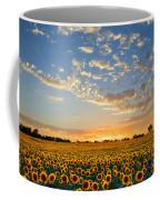 Kansas Sunflowers At Sunset Coffee Mug