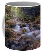 Katahdin Stream Coffee Mug
