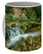 Kens Creek In Cranberry Wilderness Coffee Mug