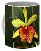 Keowee Newberry Orchid 001 Coffee Mug