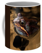 Kermitt In Bronze Coffee Mug