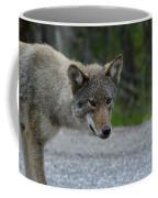 Killarney Coyote Coffee Mug
