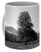 Killarney National Park, County Kerry, Ireland Coffee Mug