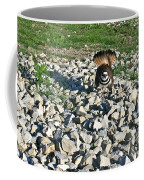 Killdeer 3 Coffee Mug