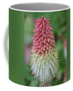 Kilmokea Coffee Mug