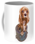 King Charles Spaniel Puppy Coffee Mug by Edward Fielding
