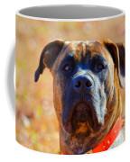 King Of My Home Coffee Mug