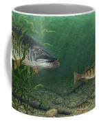 King Of The Cove Coffee Mug