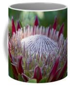 King Protea Island Flowers Jewel Of The Garden Coffee Mug