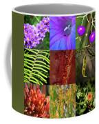 Kingdom Plantae Coffee Mug