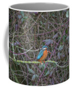 Kingfisher. Coffee Mug