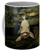 Kiss Me You Fool Coffee Mug