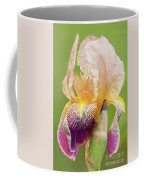 Kissed By The Rain Coffee Mug