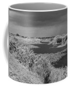 Kissimmee Storm Coffee Mug
