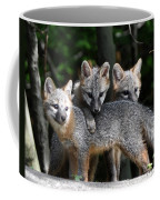 Kit Fox10 Coffee Mug