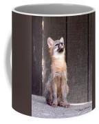 Kit Fox11 Coffee Mug