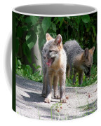 Kit Fox12 Coffee Mug