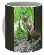 Kit Fox16 Coffee Mug