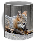Kit Fox3 Coffee Mug