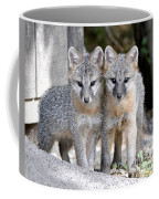 Kit Fox6 Coffee Mug