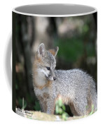 Kit Fox7 Coffee Mug
