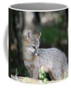 Kit Fox7 Coffee Mug