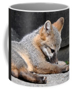 Kit Fox8 Coffee Mug