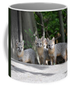 Kit Fox9 Coffee Mug