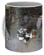 Kitchen Livestock 2 Coffee Mug