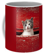 Kitten In Red Drawer Coffee Mug by Garry Gay
