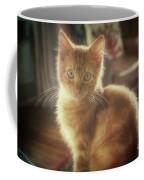 Kitten Portrait Coffee Mug