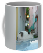 Kitten Reflections Coffee Mug