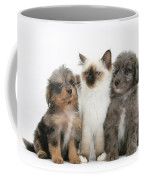 Kitten With Puppies Coffee Mug