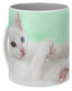 Kittens Play With Toes Too Coffee Mug