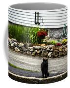 Kitty Across The Street  Coffee Mug