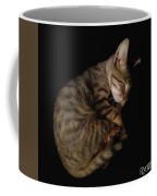 Kitty Cat Curls Up Coffee Mug