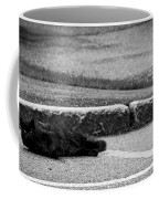 Kitty In The Street Black And White Coffee Mug