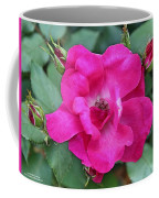 Knockout Rose Surrounded By Buds Coffee Mug