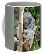 Koala Coffee Mug