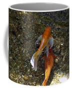 Koi-1 Coffee Mug