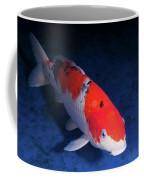 Koi Handpick Pool Coffee Mug