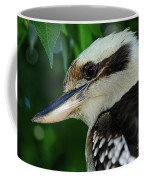 Kookaburra Portrait By Kaye Menner Coffee Mug
