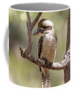 Kookaburra Sits In The Ol Gum Tree Coffee Mug