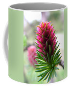 Korean Pine  Coffee Mug